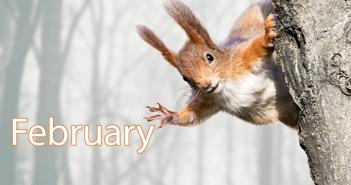 February tech update image